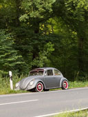 96-beloved-place-beetle-th
