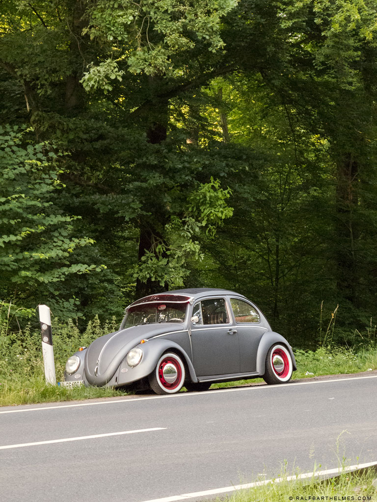 96-beloved-place-beetle