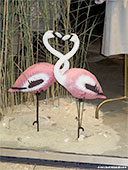 422-foto-shopping-window-flamingos-th