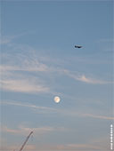 462-blue-moon-of-frankfurt-foto-th
