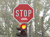 488-stop-eating-animals-frankfurt-foto-th
