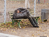 523-homeless-person-frankfurt-th