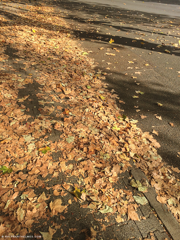 631-autum-in-the-city-haiku-daniel-johnston-fotograf